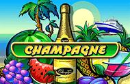 Champagne во Вулкане Удачи