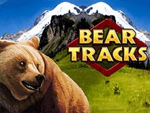 Играть онлайн на Bear Tracks