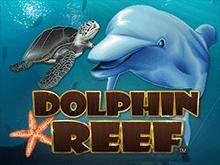 Играть онлайн на Dolphin Reef
