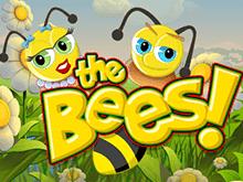 Играть на деньги во The Bees
